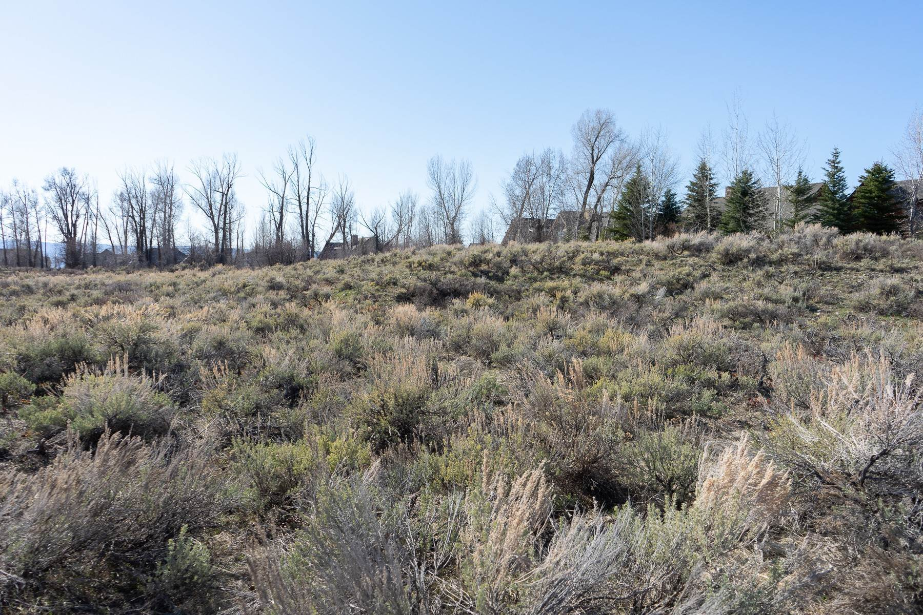 Land for Sale at TBD Ski Hill Rd Driggs, Idaho 83422 United States