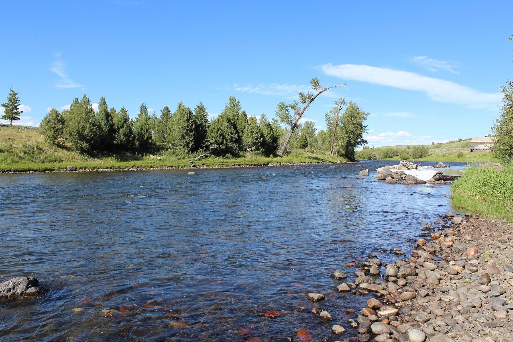 Land for Sale at 3525 Fall River Rd. Ashton, Idaho 83420 United States