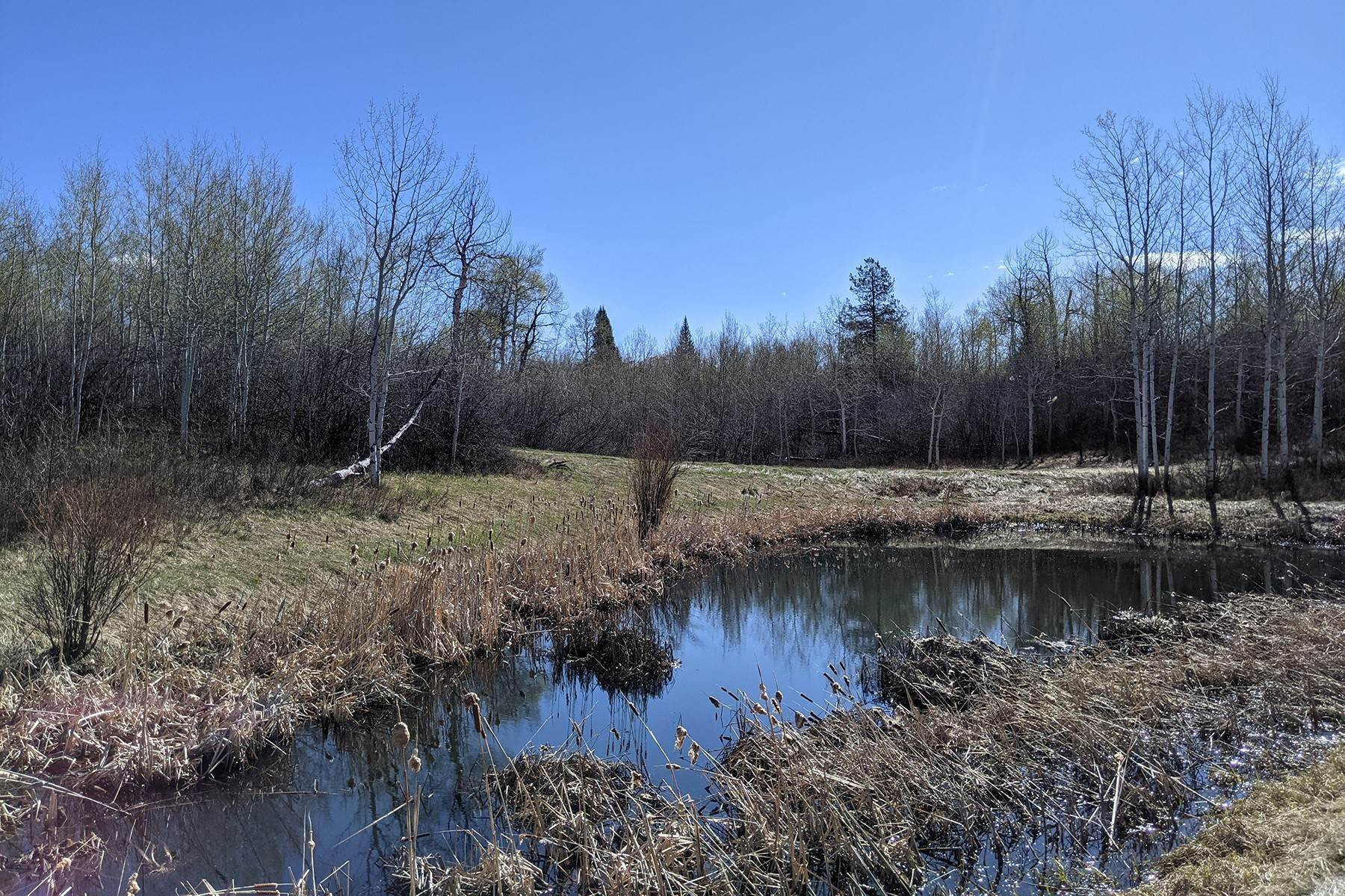 Land for Sale at Private Elevated Building Site 6162 Ruffed Grouse Rd Tetonia, Idaho 83452 United States
