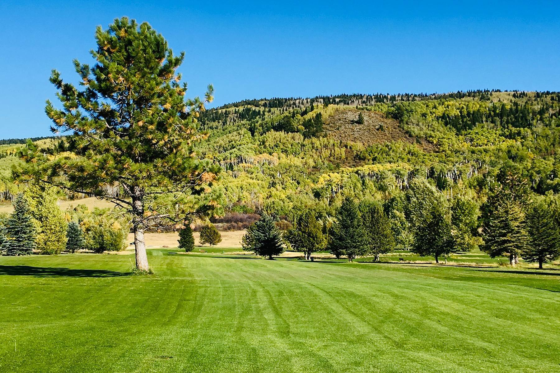 12. Land for Sale at 380 Perimeter Dr Alta, Wyoming 83414 United States