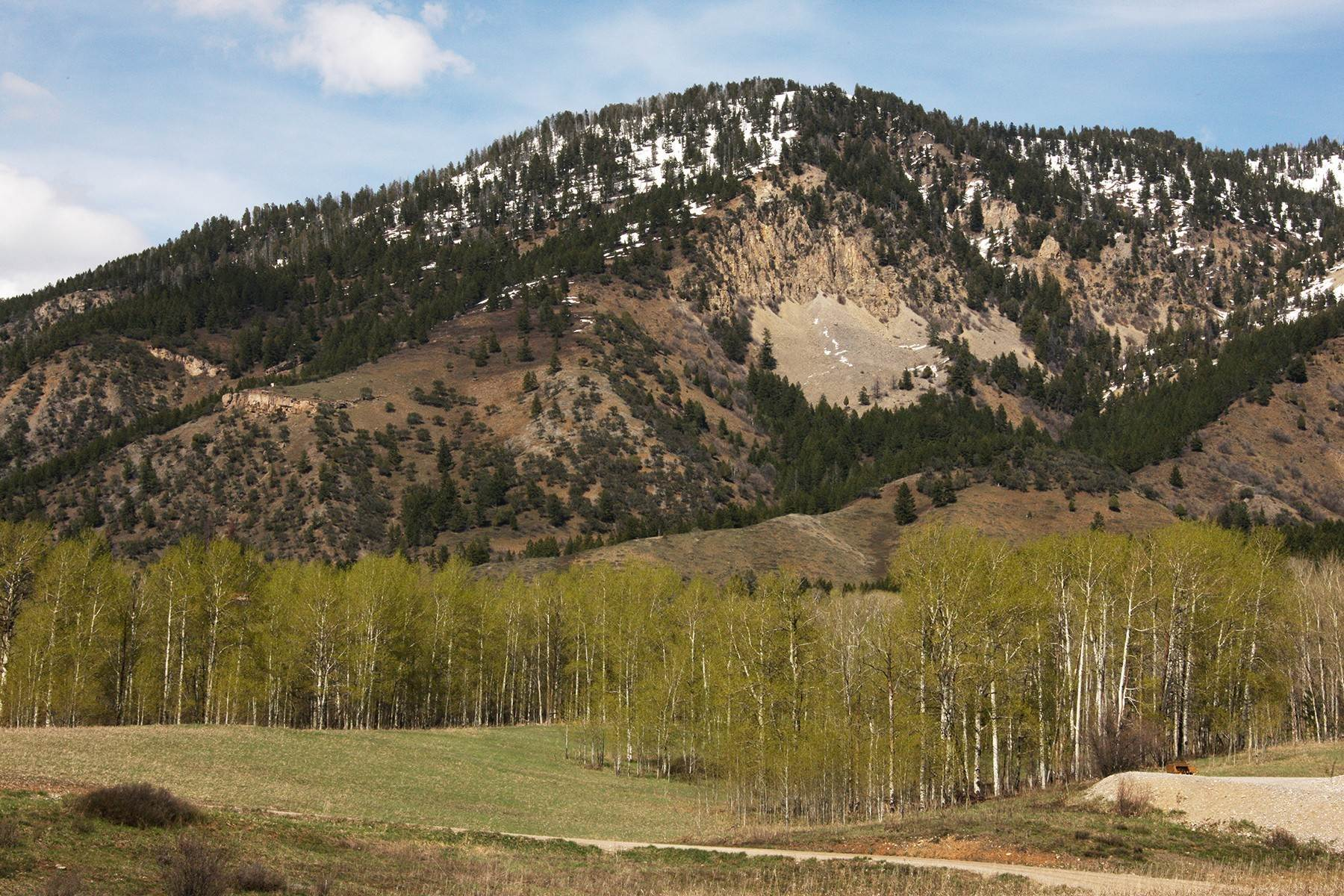 9. Land for Sale at Beautiful, private building site Lot 41 Aspens at Clark Lane Etna, Wyoming 83118 United States