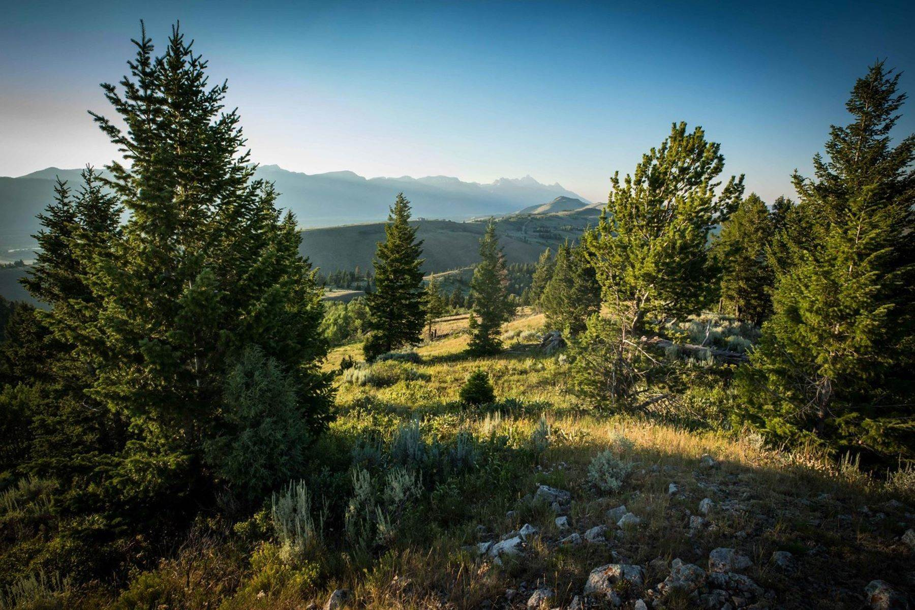 4. Land for Sale at Vogel Hill - Ranch 8 255 Red Tail Butte Road Jackson, Wyoming 83001 United States