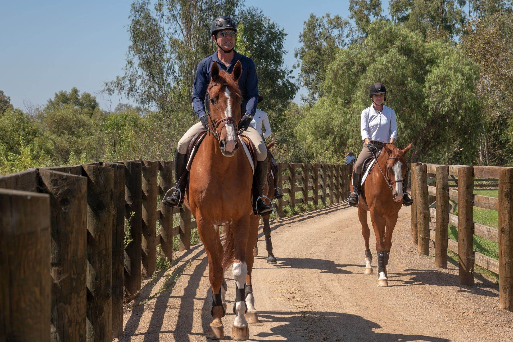 32. Farm and Ranch Properties for Sale at 16401 Calle Feliz, Rancho Santa Fe, Ca, 92067 16401 Calle Feliz Rancho Santa Fe, California 92067 United States