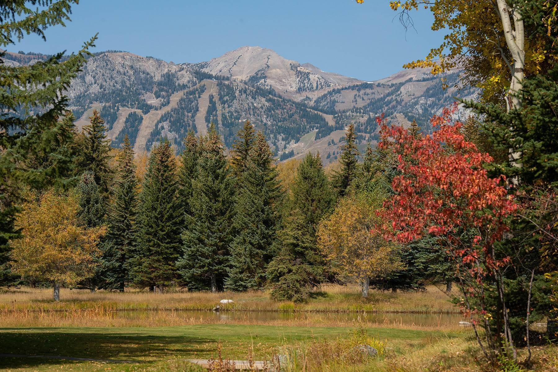 38. Single Family Homes for Sale at Elk Run Estate 1345/1245 Bugling Elk Trail Jackson, Wyoming 83001 United States
